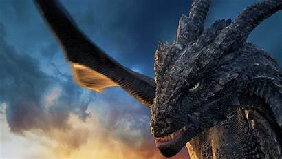 Dragonheart Curse Sorcerer Film Movie Druiden Fluch