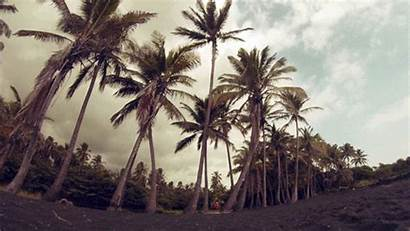 Beach Hawaii Gifs Nature Sand Landscape Giphy
