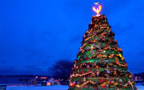 merry christmas usa herald