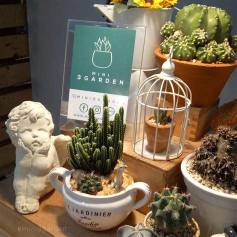 mini cactus garden | สวนขนาดเล็ก, ดอกไม้, Diy และงานฝีมือ