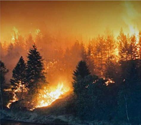 natural  man  disasters cost  billion mcdougall