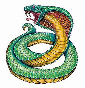 King Cobra | TattooForAWeek Temporary Tattoos Largest ...