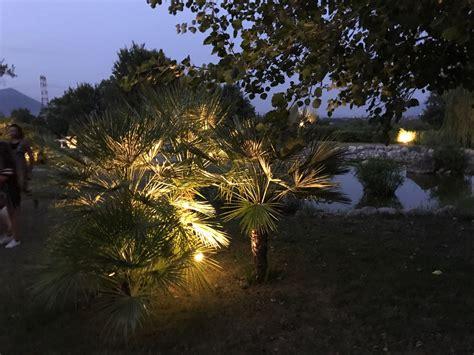illuminazione da giardino prezzi prezzi a confronto dei faretti led da giardino orto