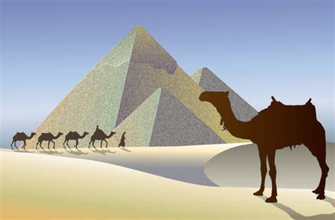 egypt  vector    vector