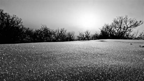 Wallpaper Black And White by Black And White Landscapes Nature Winter Wallpaper