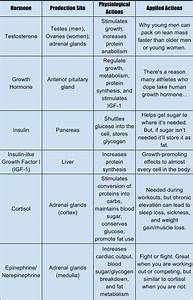A Coach U2019s Field Guide To Hormones