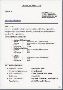 resume format legal resume format download With free law enforcement resume templates
