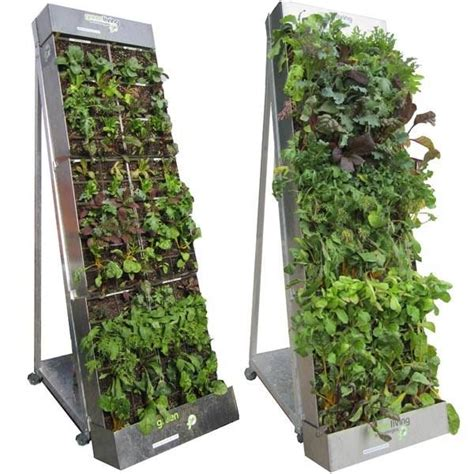 1000 images about vertical gardening on