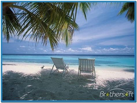 screensaver pictures  beaches