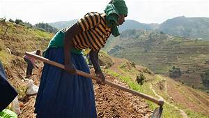 Rwanda: Achieving Food Security, Reducing Poverty, Moving ...