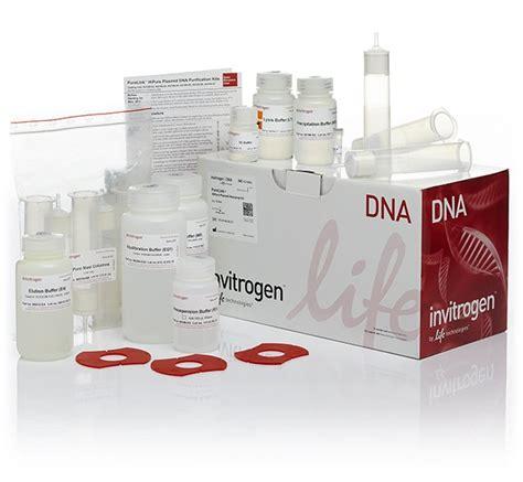 PureLink HiPure Plasmid Maxiprep Kit Thermo Fisher