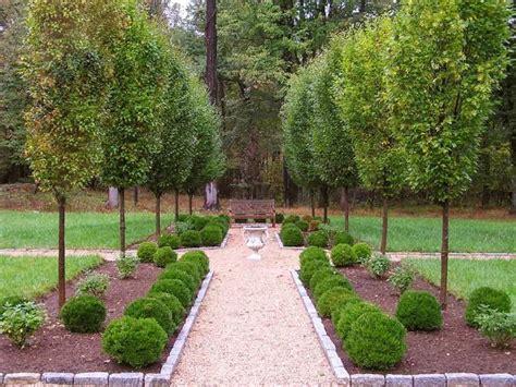 Säulenförmige Bäume Für Schmale Gärten