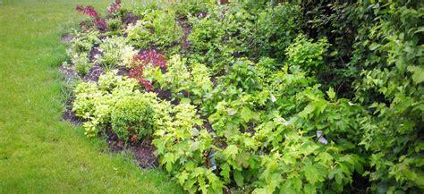 Gartengestaltung & Teichanlagen