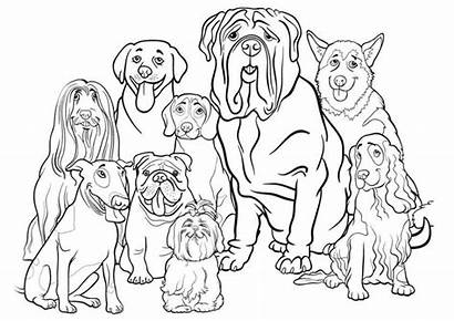 Coloring Dogs Printable Puppies Dog Puppy Whole