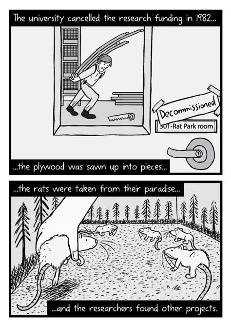 rat park drug experiment comic  addiction stuart