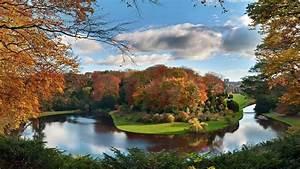 Beautiful, Pond