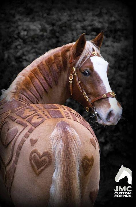ces chevaux ont les coupes les  formidables jamais vues