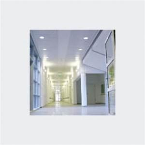 Faux Plafond Autoportant : faux plafond m tallique bacs autoportants richter system ~ Nature-et-papiers.com Idées de Décoration