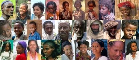 In Which Ethnic Group Are Ethiopians Placed Negroid