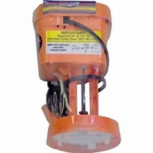 Pumps  U0026 Accessories Stores  Dial 1540 115 Volt Power Clean