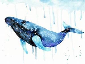 cosmic animal meaning medicine magic galactic