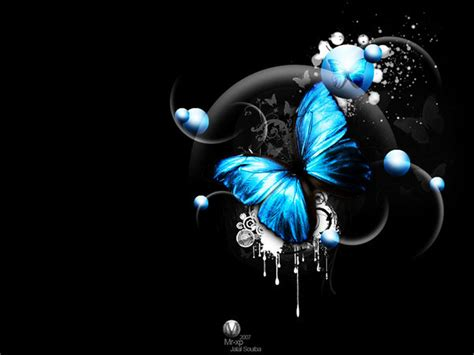 3d Wallpapers Butterfly by 3d Image And Piture 3d Butterfly Image