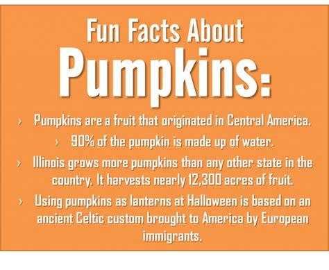 26 Halloween Facts  Gallery  Ebaum's World