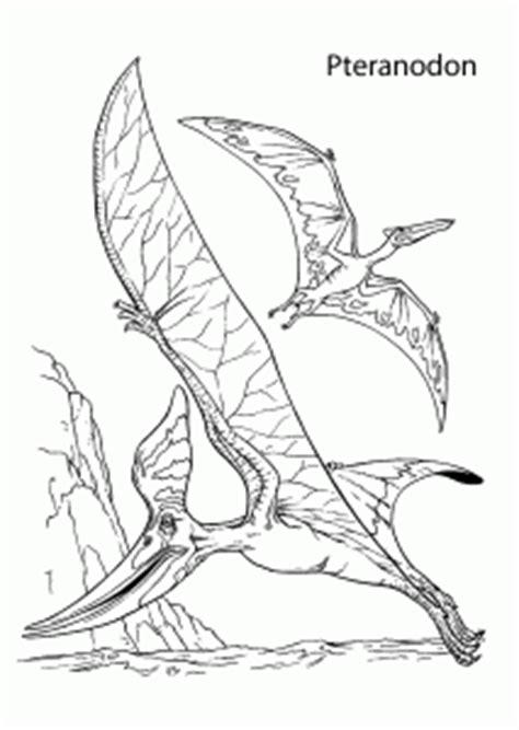 pteranodons dinosaurs coloring pages  kids printable