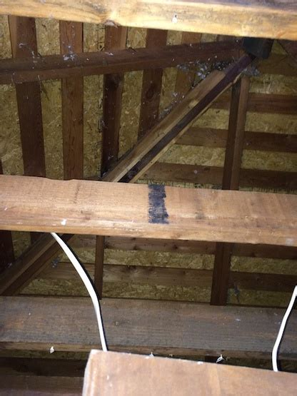 vaulted ceiling insulating removal  ceiling joists