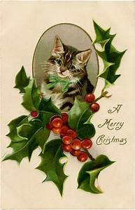 9 Christmas Cat Images Free Clip Art The Graphics Fairy