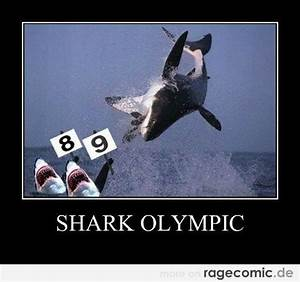 Funny Quotes About Sharks. QuotesGram