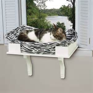 cat window seat modal title