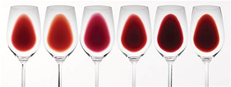 wine color shades of what does the colour of wine te