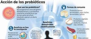 Los probioticos son beneficiosos para el organismo for Probioticos y bacterias beneficiosas para el cuerpo