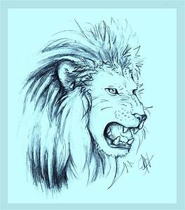 Drawings Of A Lion Roaring | www.imgkid.com - The Image ...
