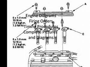 Free Lexus Wiring Diagrams