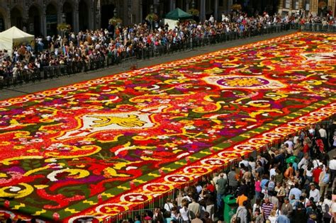 le tapis de fleurs le tapis de fleurs sur la grand place de bruxelles