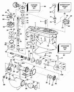Wiring Diagram For 1991 Evinrude 150