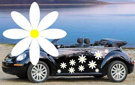 64 White Daisy Car Decals,daisy Car Graphics,daisy