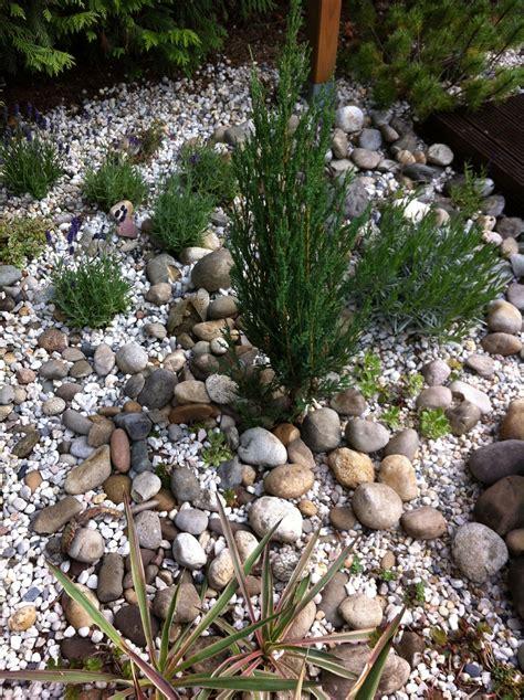 Kiesbeete Im Garten by Kiesbeet Garten Kiesbeet Garten Und Kies