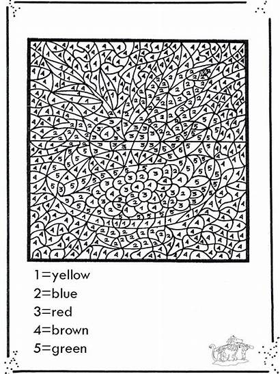 Printable Adults Numbers Paint Coloring Number Popular