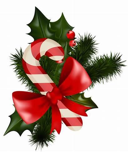 Transparent Christmas Clipart Candycane Candy Cane Mistletoe