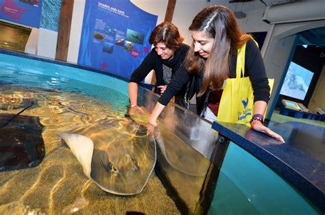 aquarium operator plans  facility  trumbull