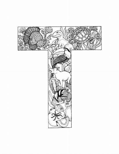 Coloring Alphabet Pages Letter Letters Adult Adults