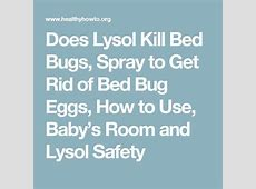 will lysol kill bed bugs 28 images does lysol kill bed