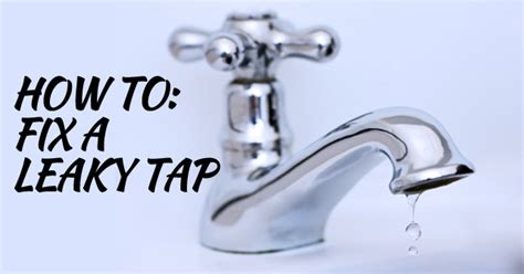 How To Fix A Leaky Tap  Love My House
