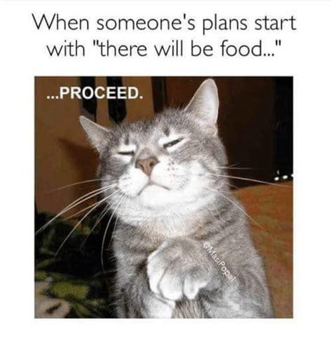 grumpy cat memes grumpy cat meme memes cat