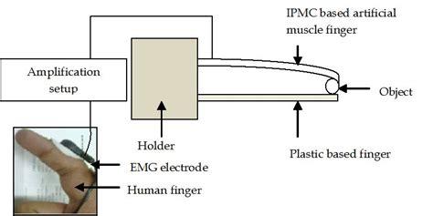 emg wiring diagram new guitar emg neckbridge active humbucker electric