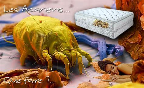 achat canapé lit acariens comment s 39 en débarrasser adjocom