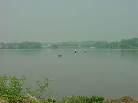 Pa Fish And Boat Commission Biologist Reports by 2004 Biologist Report Struble Lake Pt 3